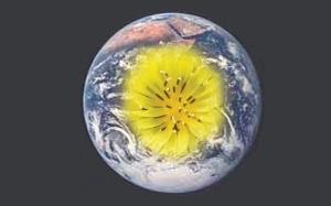 Boo18-05-EarthFlowerLFlat