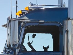 131109-TruckerHolly-ASC_7076RSs