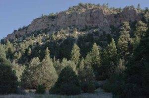140630-canyon-asc_9799RLSss