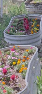 140726-garden-ASC_0501RLSss copy