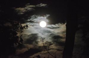 150928-moonnight-ASC_9697RSs copy
