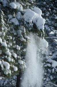160203-snow-ASC_2021RSs